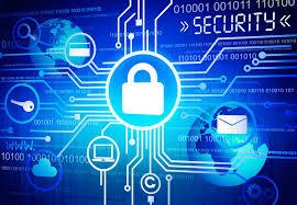 siber güv yarısması